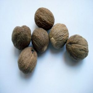 Nutmeg as healing herbs and spices